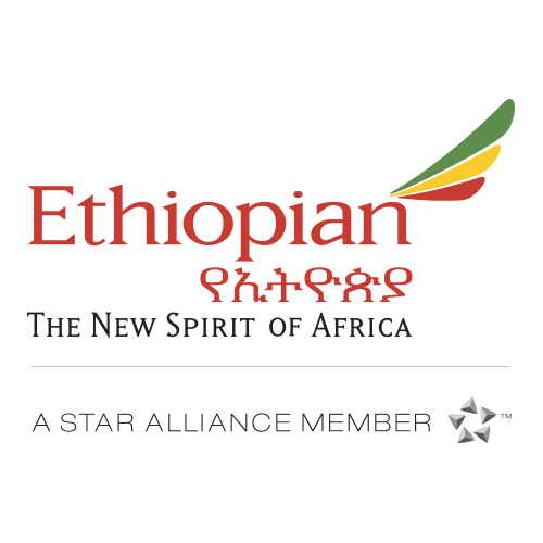 Image result for ethiopian airlines logo