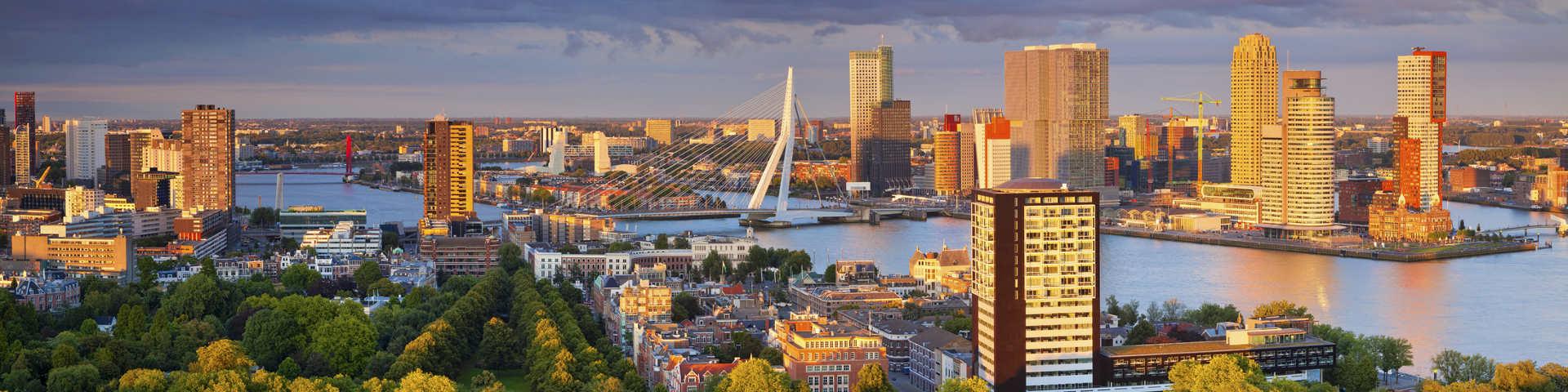 Rotterdam hero1