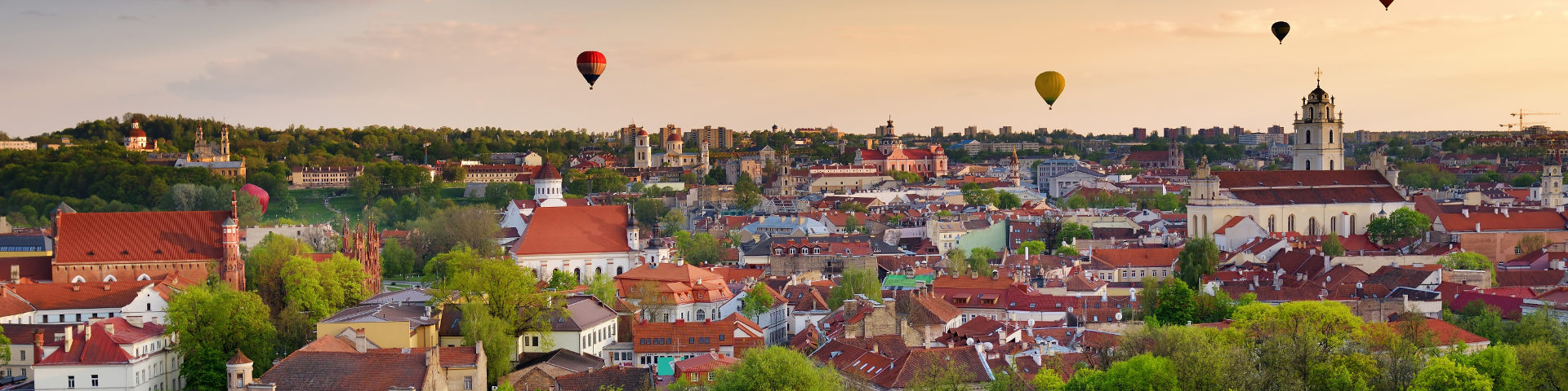 Vilnius hero