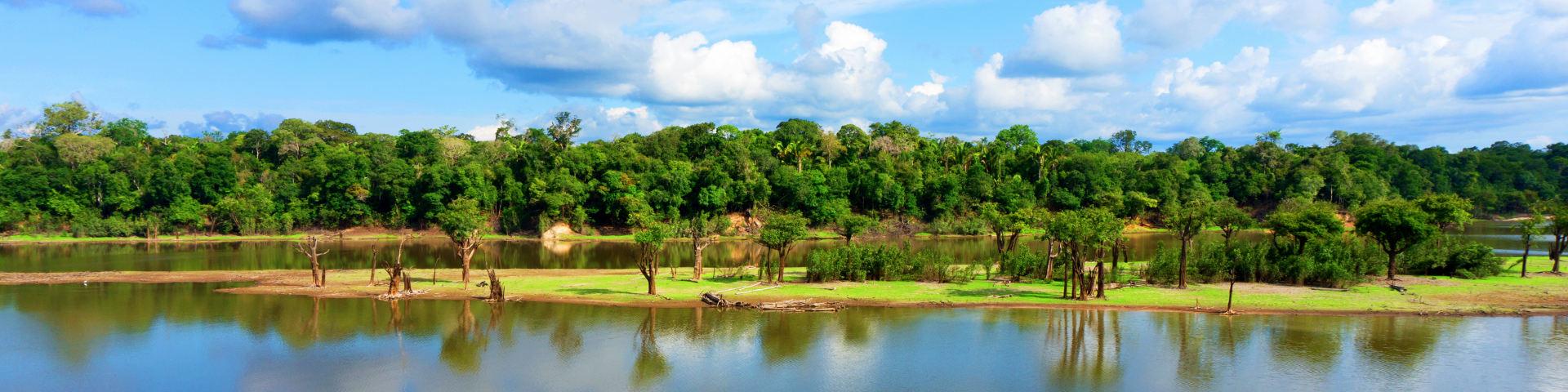 Manaus hero