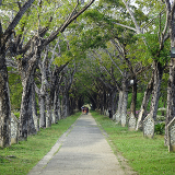 Kilim Karst Geoforest Park