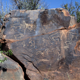 Wildebeest Kuil Rock Art Centre