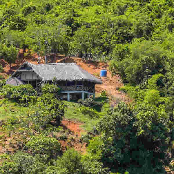 Lokobe Nature Reserve