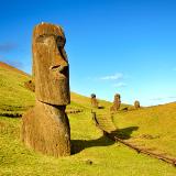 Polynesian heritage