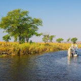Chobe River Tours
