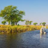 Chobe River Tours