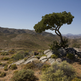 Richtersveld National Park