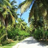 Seychelles National Botanical Garden