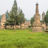 Shaolin Pagoda Forest