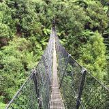 The Parc du Banco rainforest reserve