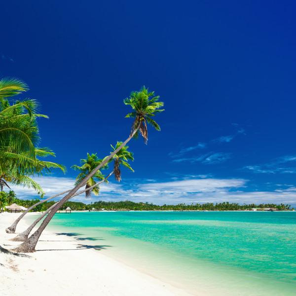 Plantation Island Fiji
