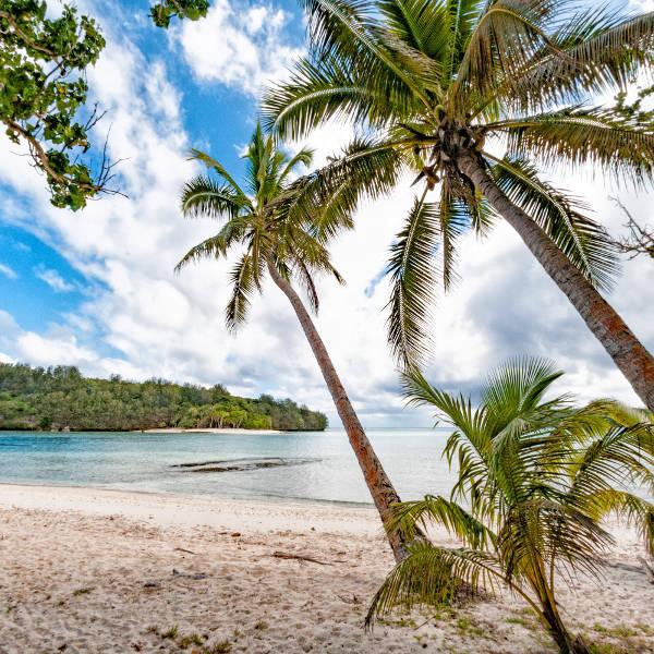 Tonga Vavua Landscape