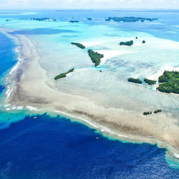 palau diving paradise