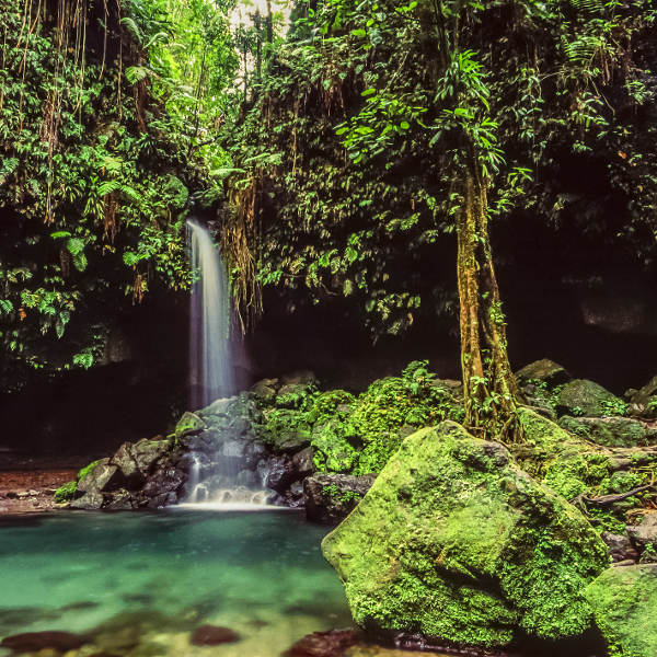 dominica heavenly nature