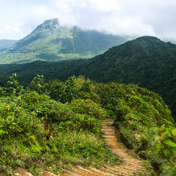 dominica waitukubuli trail