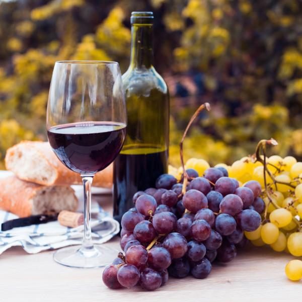 menorca-wine
