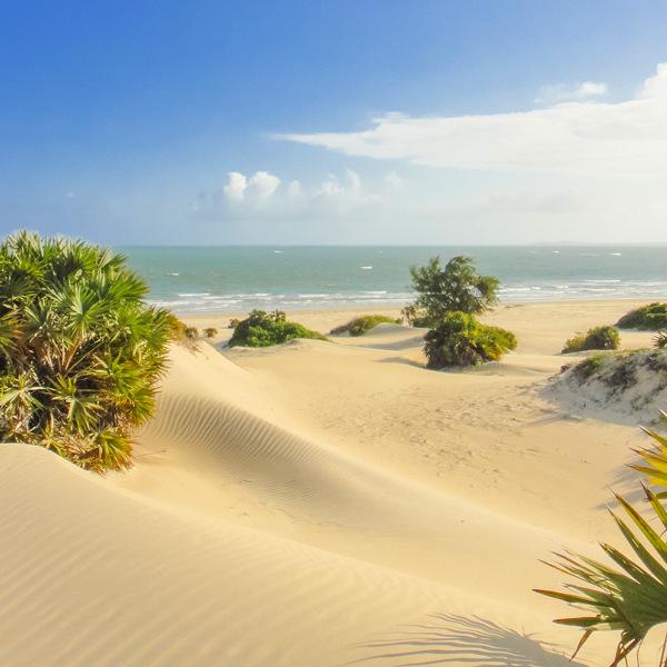 Lamu Shela Beach