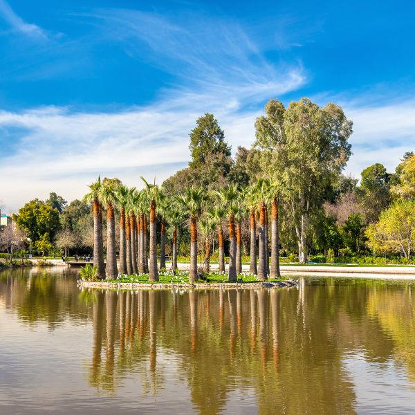 fes-garden-oasis