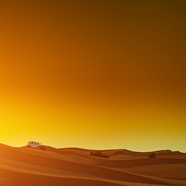 Desert Sokoto