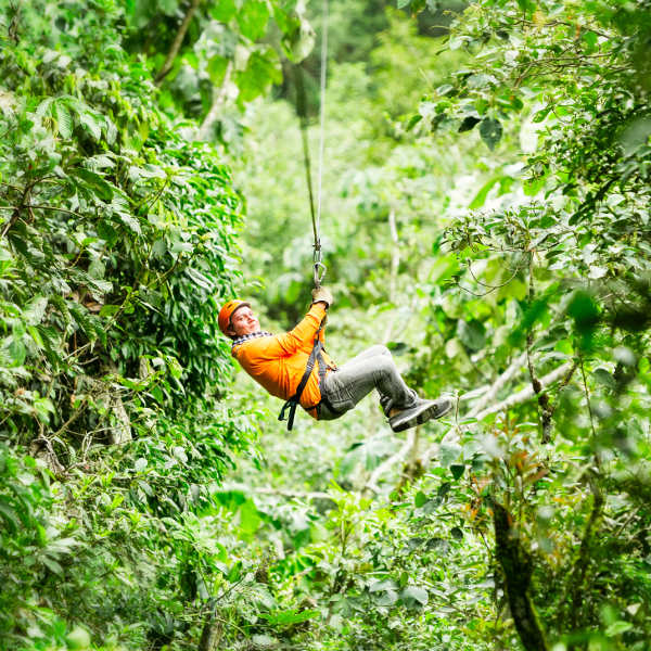 zip lining forest