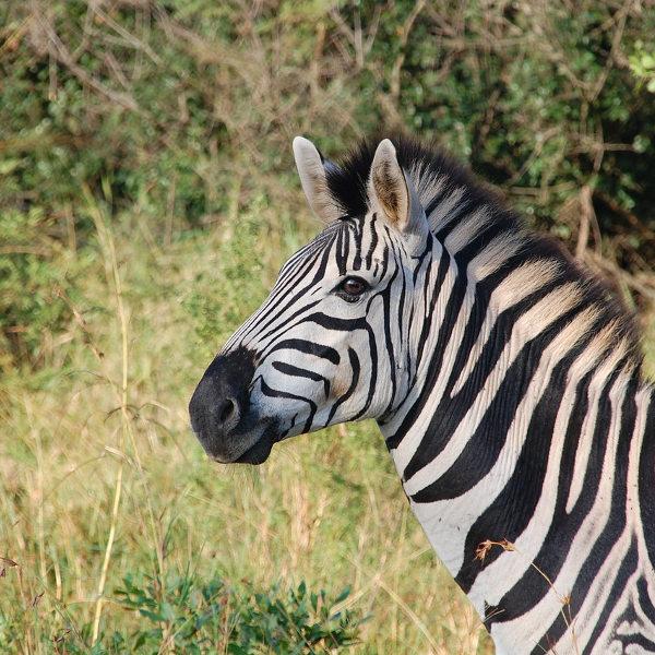 arusha_national_parks