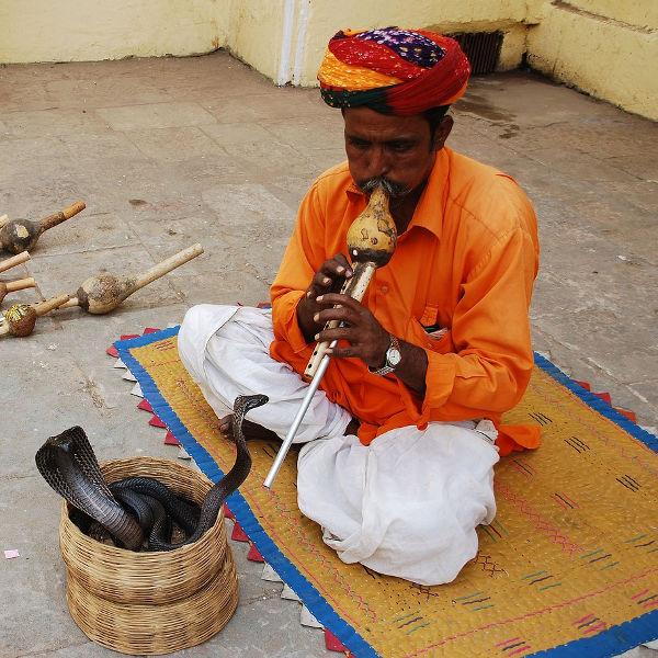 jaipur experiences