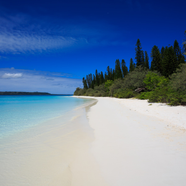Tropical Beach Isle of Pines New Caledonia