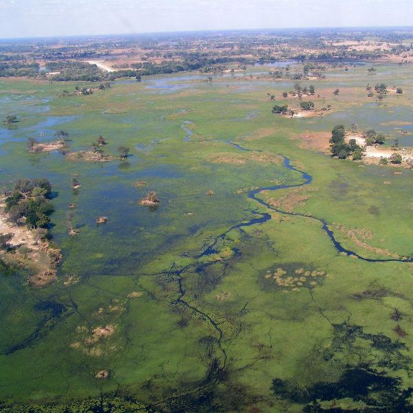 Helicopter View Okavango Delta Maun