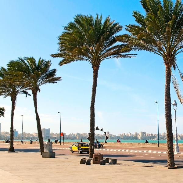 Alexandria Coastline