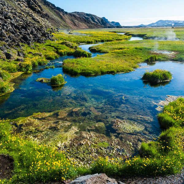 reykjavik nature