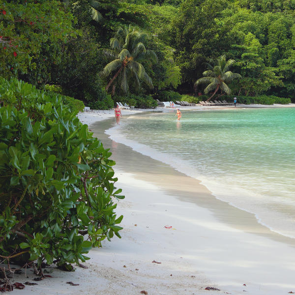 Beach on Mahe