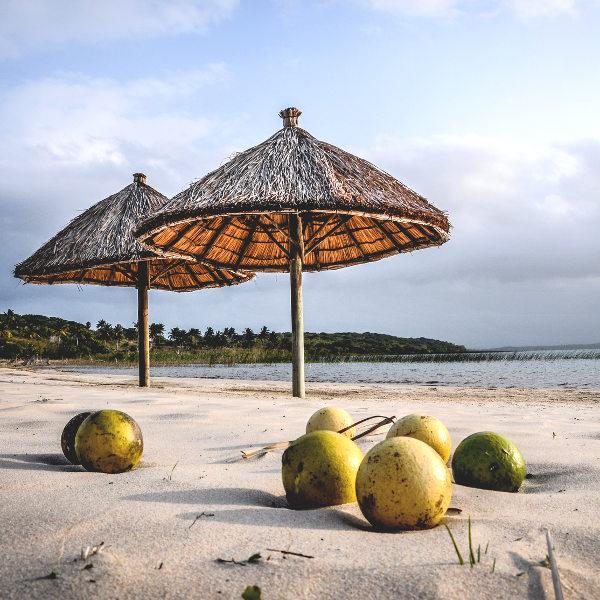 banjul beaches