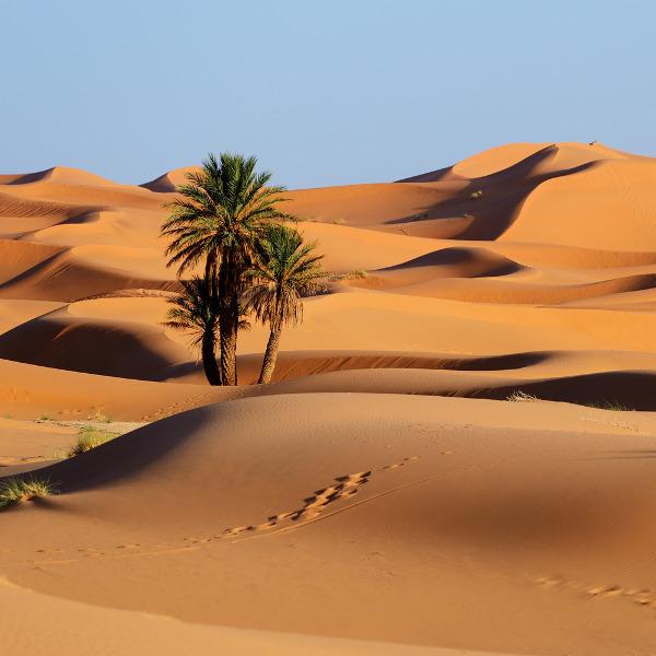 nouakchott desert