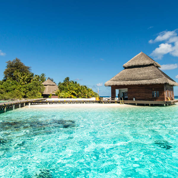 Unique Tropical Beach