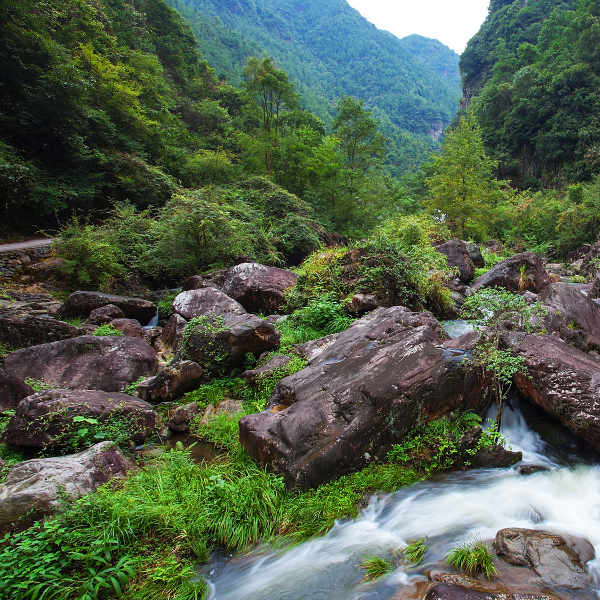 wenzhou nature