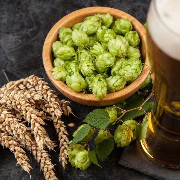 qingdao-beer