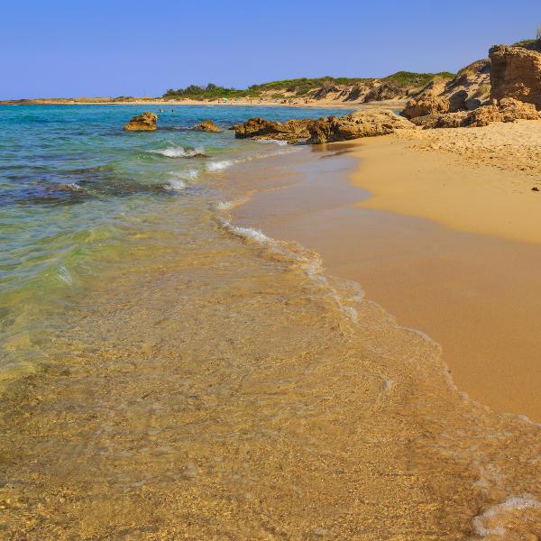 brindisi beach in nature reserve