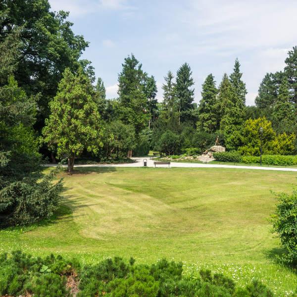 Szczytnicki Park Wroclaw
