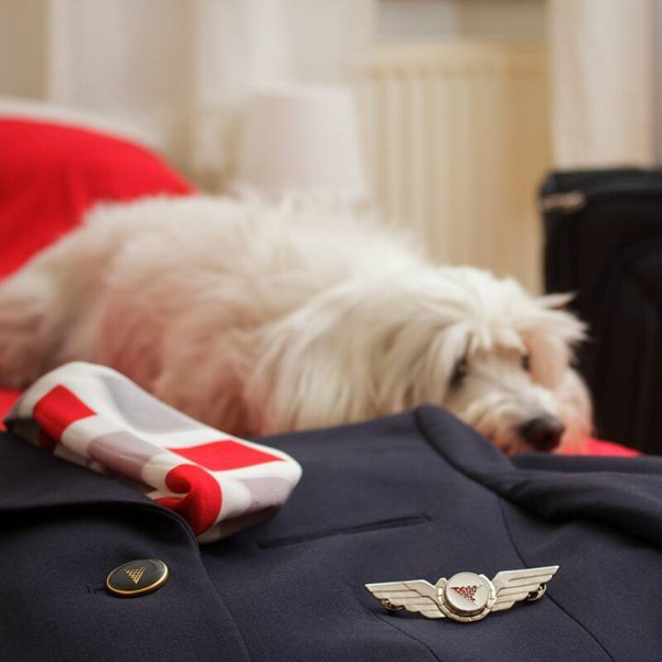 Croatia air pets