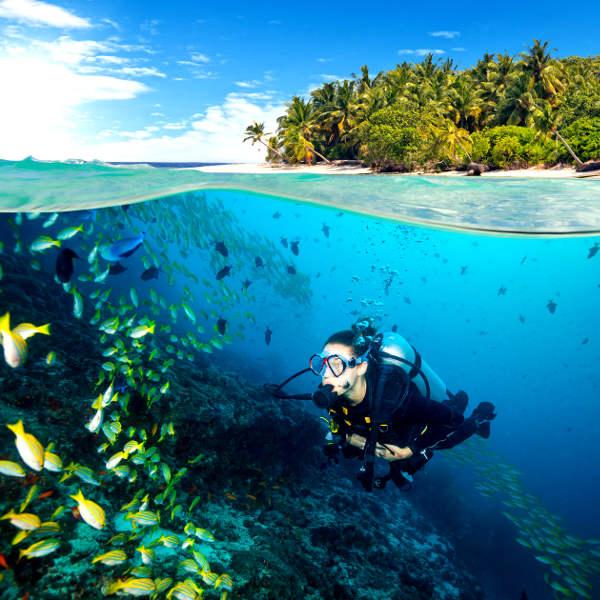 zanzibar tropical paradise