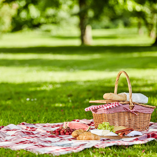 picnic basket green grass