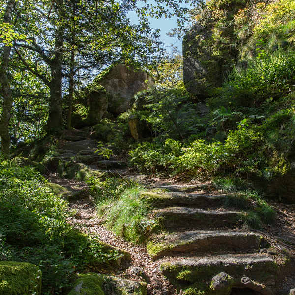bismarck-nature-reserve