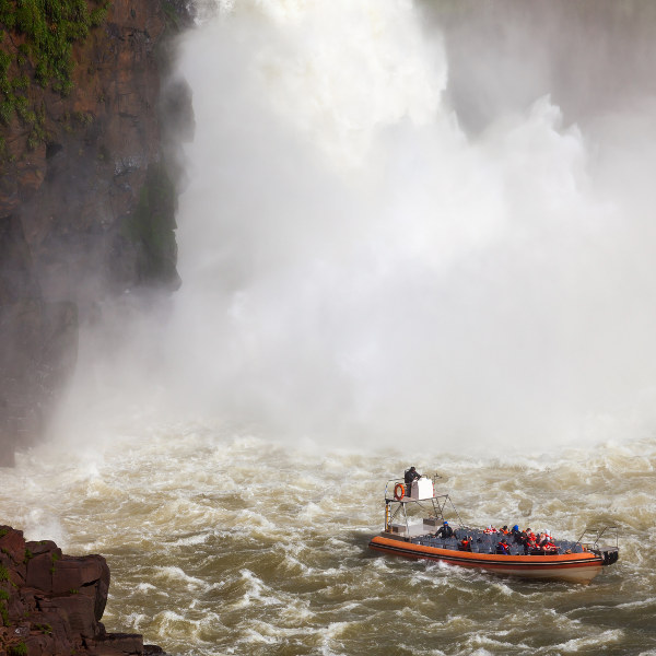iguazu-falls-jungle