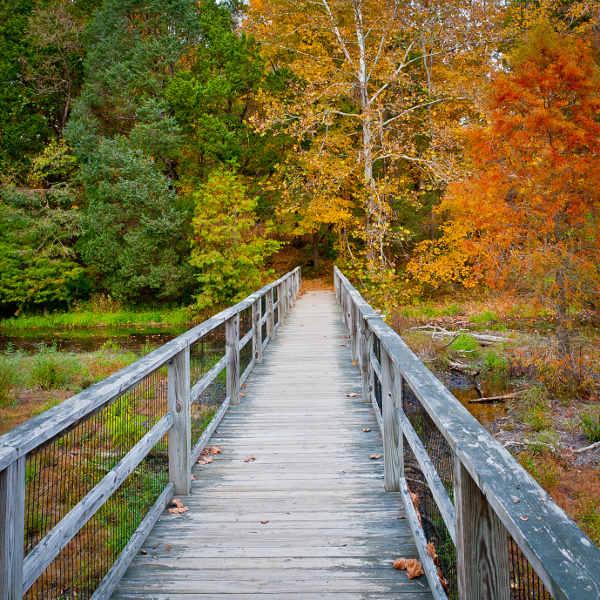louisville-serene-parks