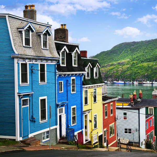 Bright Coloured Houses St. John's