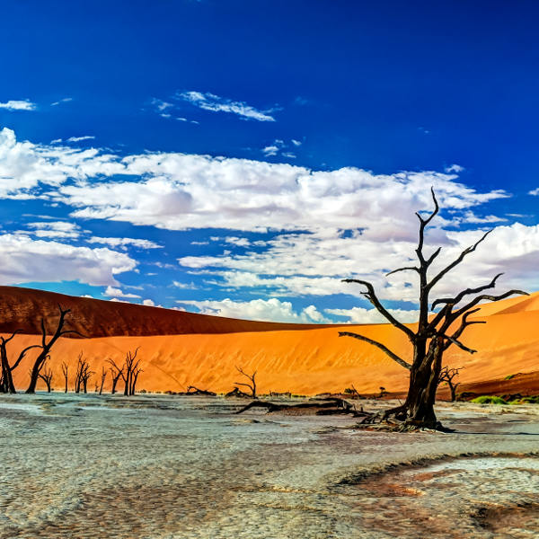 namibia surreal landscapes