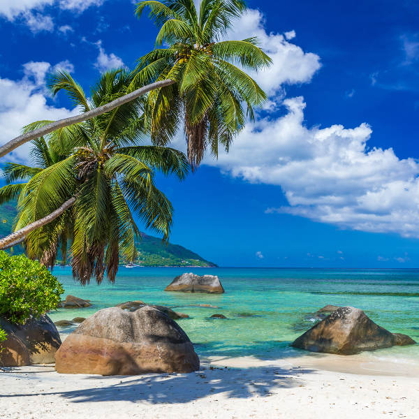 Seychelles Island Beaches: Cheap Flights To Seychelles: The Lowest Prices