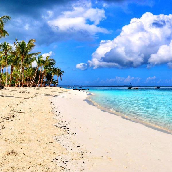 tanzania tropical islands
