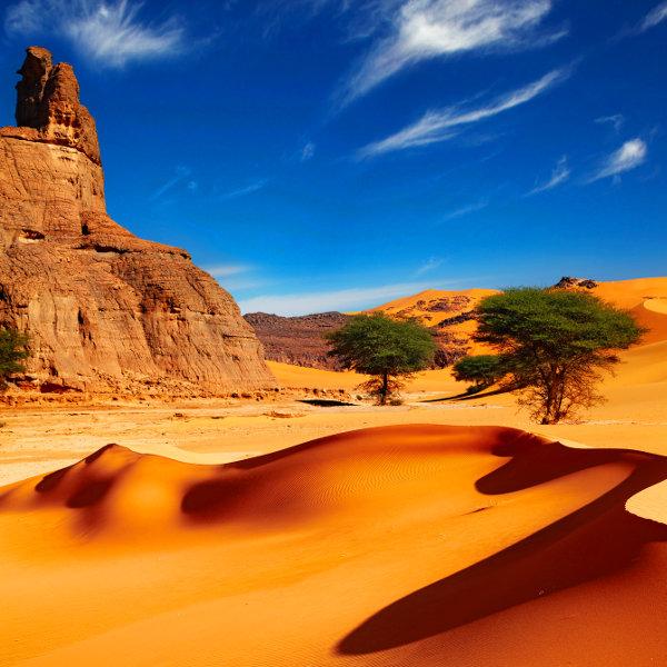 algeria sahara desert