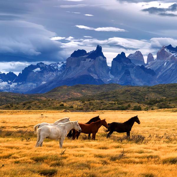 chile wild landscapes
